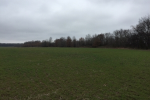 80+/- Acre Duck Hunting Farm near Cache River in Woodruff, AR (31 of 33)