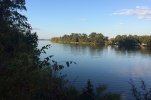 River View Landing Lots on Lake Dannelly - Wilcox County AL