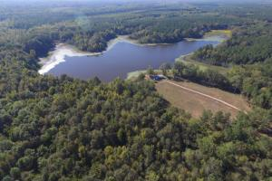 Magnolia Swamp Tract - Lowndes County AL