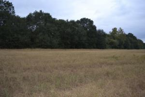 520+/- Acre Recreational Farm on Bayou Bartholomew - Lincoln County AR