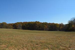 122 Acres Habersham Acreage - Habersham County GA