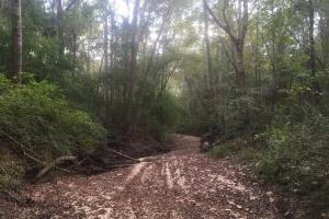 Noland Creek Homesite, Lot 8 - Autauga County AL