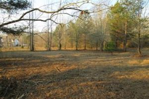 Noland Creek Homesite, Lot 19 - Autauga County AL