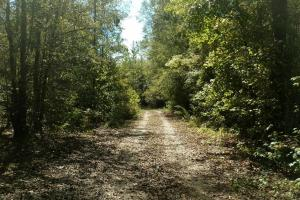Cochgalechee Creek Tract - Russell County AL