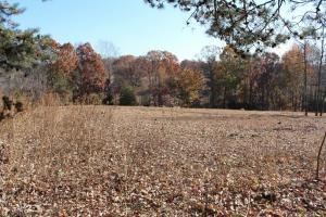 Harmony  Crop & Farm Land - Iredell County NC