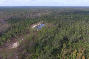 Buffalo Swamp Recreational Property - McIntosh County GA
