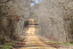 Freetown Creek Timber, Hunting, & Farming in Perry, AL (26 of 27)