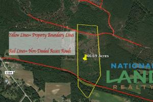 Pender County Hunting Land - Pender County NC