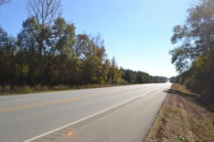 10+/- Acres Timberland on Highway 425 (Haskew Tract 9) - Ashley County AR