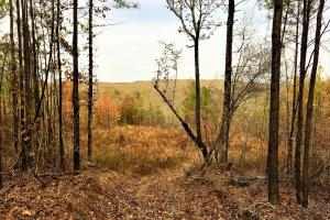 Crooked Creek Development Property - Jefferson County AL