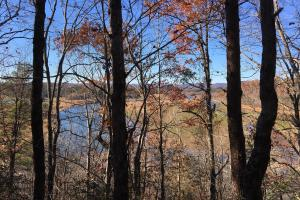 Hardwoods and Creeks Near Tugaloo River in Oconee, SC (2 of 29)