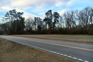 Worley Farm Lot 8 - Horry County SC