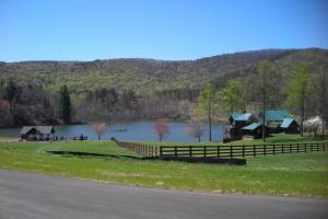 Mountain Homesite in Gated Community in Gilmer, GA (2 of 15)