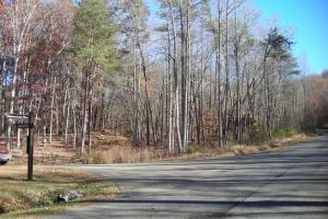Mountain Homesite in Gated Community - Gilmer County GA