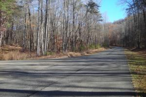 Mountain Homesite in Gated Community in Gilmer, GA (14 of 15)
