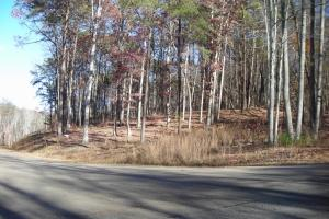 Mountain Homesite in Gated Community - Gilmer County, GA