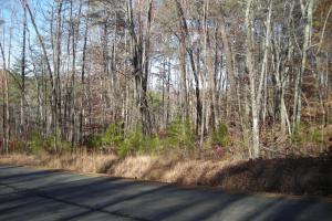Mountain Homesite in Gated Community in Gilmer, GA (7 of 15)