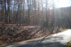 Mountain Homesite in Gated Community in Gilmer, GA (13 of 15)