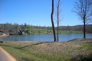 Mountain Homesite in Gated Community in Gilmer, GA (5 of 15)