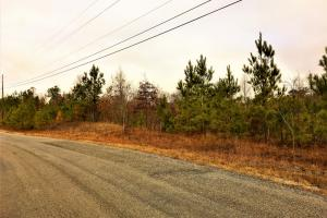 10.03 Acres Commercial Opportunity in Warrior - Blount County AL