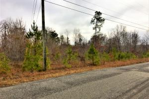 1.70 Acres Commercial Opportunity in Warrior