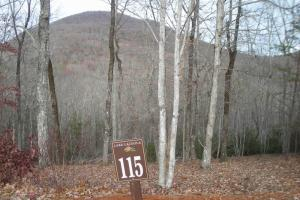 Mountain Lot with Lake View - White County GA