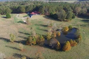 Hwy 231 Farm & Hunting Tract - Montgomery County AL