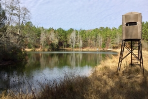 The Magnolia Lakes Camp Creek Tract - Marengo County AL