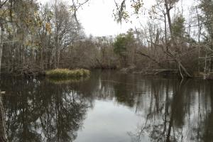 1953 Acres on Lynches River - Florence County SC