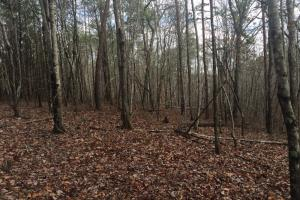 Black Creek Hunting/Farm Tract - Jefferson County AL