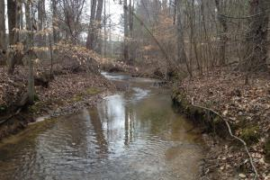 Camp Creek Recreational Property and Homesite - Bibb County AL