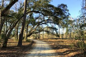 Seabrook Huspa Creek Drive Residential Lots - Beaufort County SC
