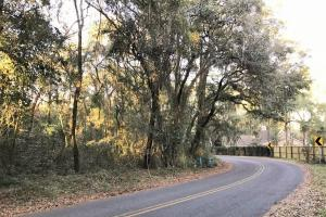 Port Royal Undeveloped Lot - Beaufort County SC