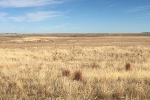 CRP For Sale - Income Producing Eastern Colorado Ag Land - Kit Carson County CO