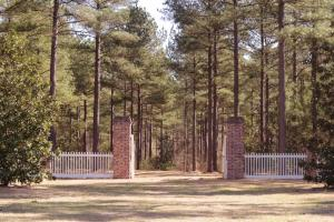 Pine Grove Plantation in Kershaw, SC (5 of 82)