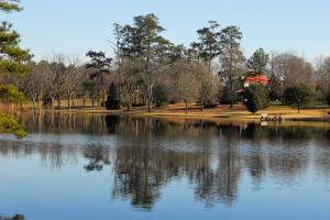 Pine Grove Plantation - Kershaw County SC