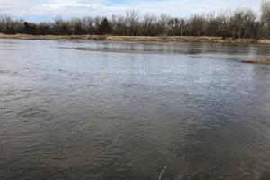 Dawson County Platte River Frontage in Dawson, NE (21 of 27)