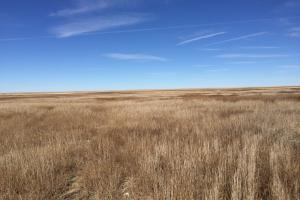 Dry Land Farm Ground For Sale Cheyenne County, CO
