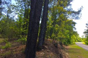 Mt. Pisgah Road Homesite