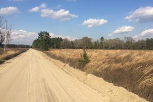 Recreation and Farming Property - Long County GA