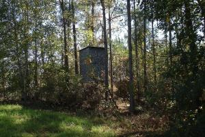 Ramey Road Hunting and Recreation - Hale County AL