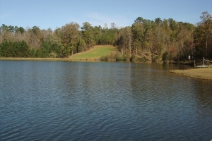 Weekend Retreat with Lakes - Hale County AL