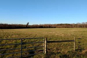 Beautiful Farm - Chatham County NC