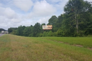 I-65 Hunting or Commercial Tract - Butler County AL