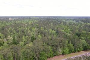 Walker County Wooded Development / Investment Property - Walker County TX