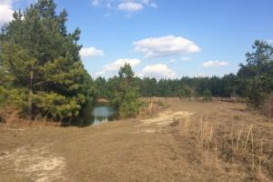 Fort Stewart Farm or Recreational Homesite - Long County GA