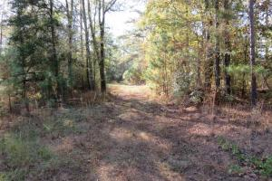 Copiah County hunting property in Copiah, MS (12 of 30)