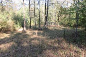 Copiah County hunting property in Copiah, MS (2 of 30)