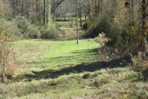 Copiah County hunting property in Copiah, MS (22 of 30)