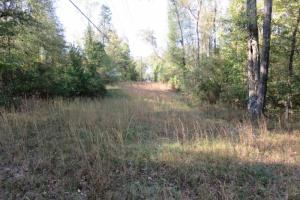 Copiah County hunting property in Copiah, MS (3 of 30)